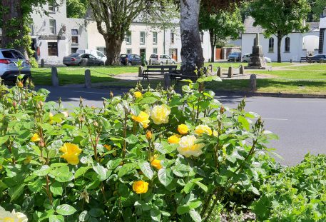 Tidy Towns, Inistioge, Roses